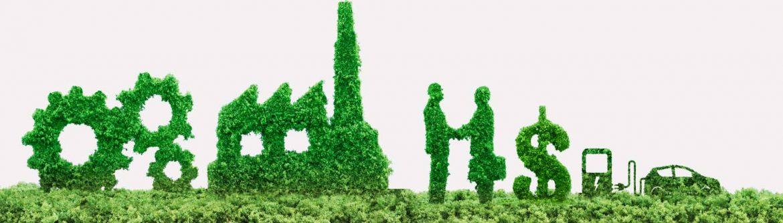 Sustentabilidad empresarial, business, mexico,consultant, business consultant, sostenible